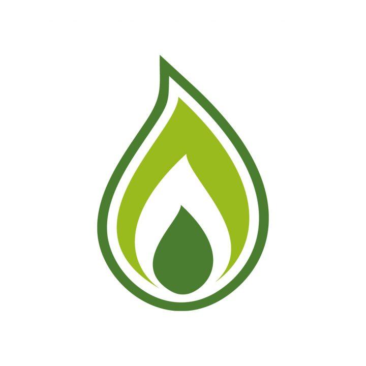 Green Gas – eine zukunftsweisende Entwicklung mit großem Potential.